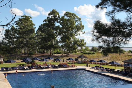 Four Seasons Carmelo pool and trees