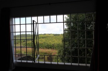 Narbona Wine Lodge window