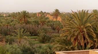 Dar Ahlam Skoura oasis view