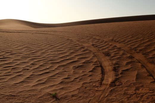 Dar Ahlam Tent Camp tire tracks
