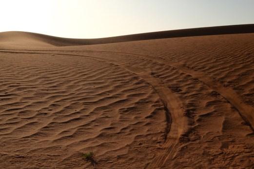Dar Ahlam Tent Camp tire tracks