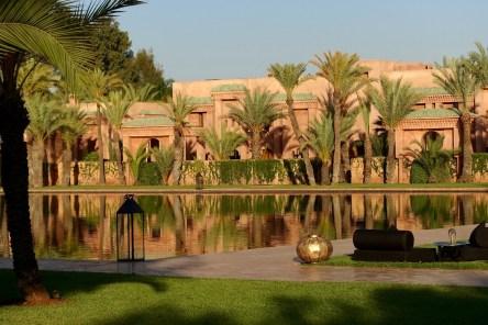 Amanjena palm trees