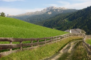 San Cassiano cross Trail #15 fences