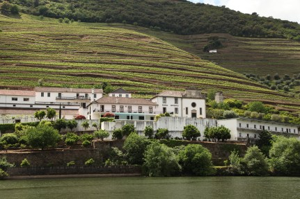 Douro Exclusive boat tour views