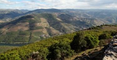 Douro Valley Douro Exclusive tour