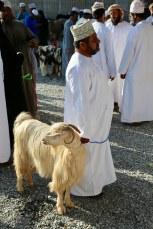 Nizwa Goat Market shepheard