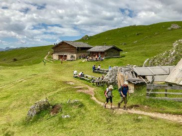 Malga Piera Longia is the rifugio stop on the way. Fantastic little place with a grazing cattle, stubborn mules and cold beer.