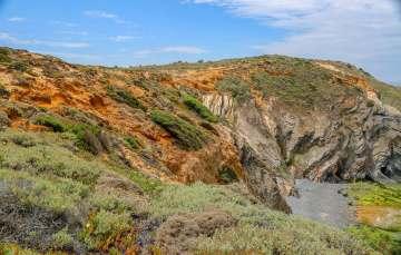 Praia dos Alteirinhos colorful plants