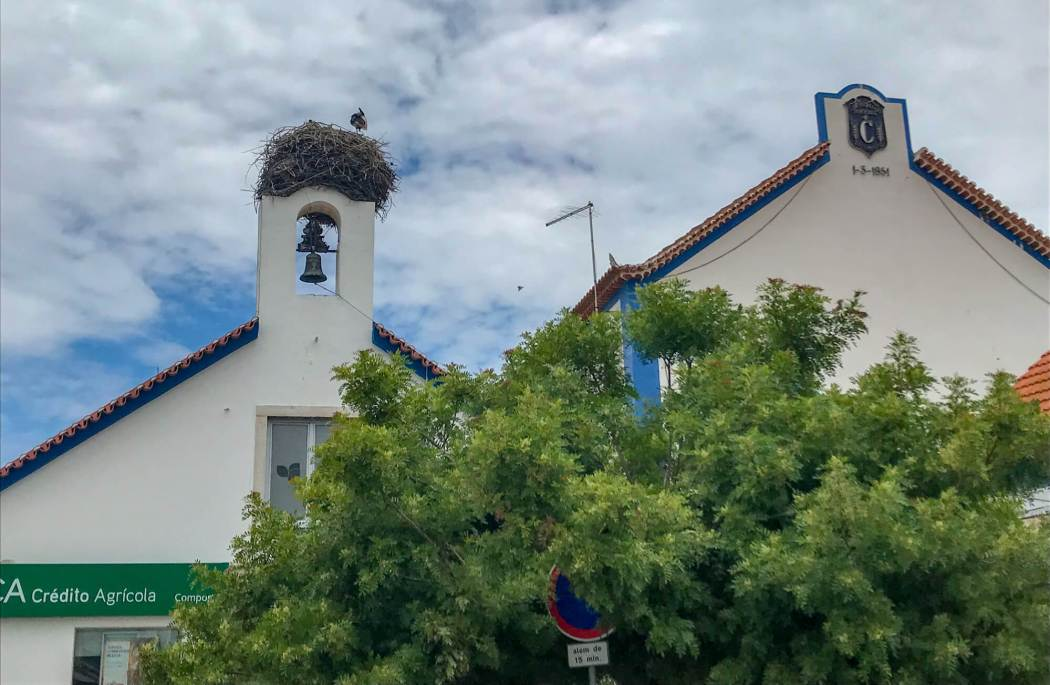 Stork nests in Comporta Portugal