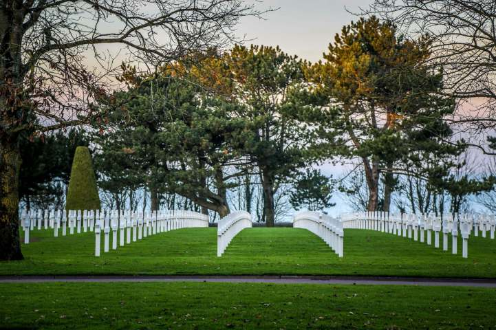 Normandy American Cemetery trees at dusk