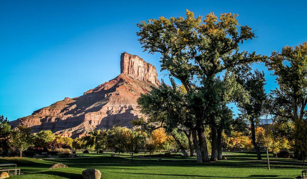 Palisade trees Gateway Canyons