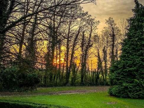 Château de Damigny sunrise