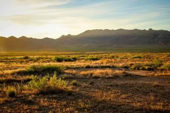 Painted Pony Resort desert in sunlight