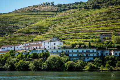 Douro Exclusive river boat tour