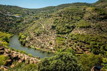 Quinta do Panascal Douro Exclusive