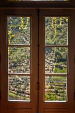 Quinta do Panascal vineyard view