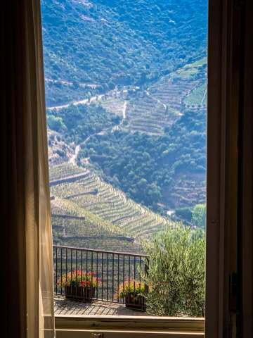 room with view Vila Gale Douro