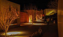 Amangiri pathway at night