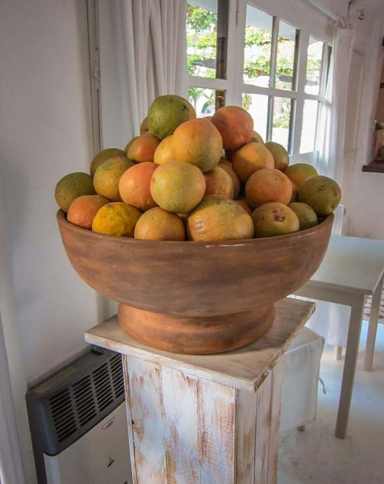 House of Jasmines oranges