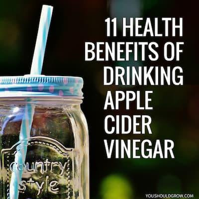 11 Health Benefits of Drinking Raw Apple Cider Vinegar