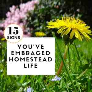 15 Signs You've Embraced Homestead Life