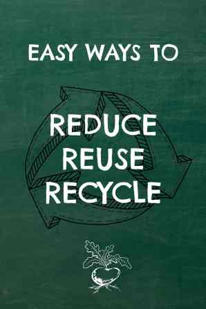 Easy Ways to Reduce, Reuse, Recycle