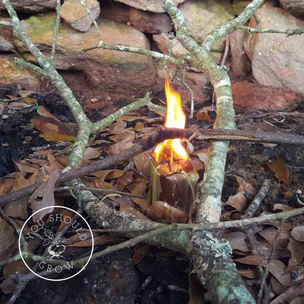 DIY Fire Starter: Easy To Make And Burns For 30 Minutes!