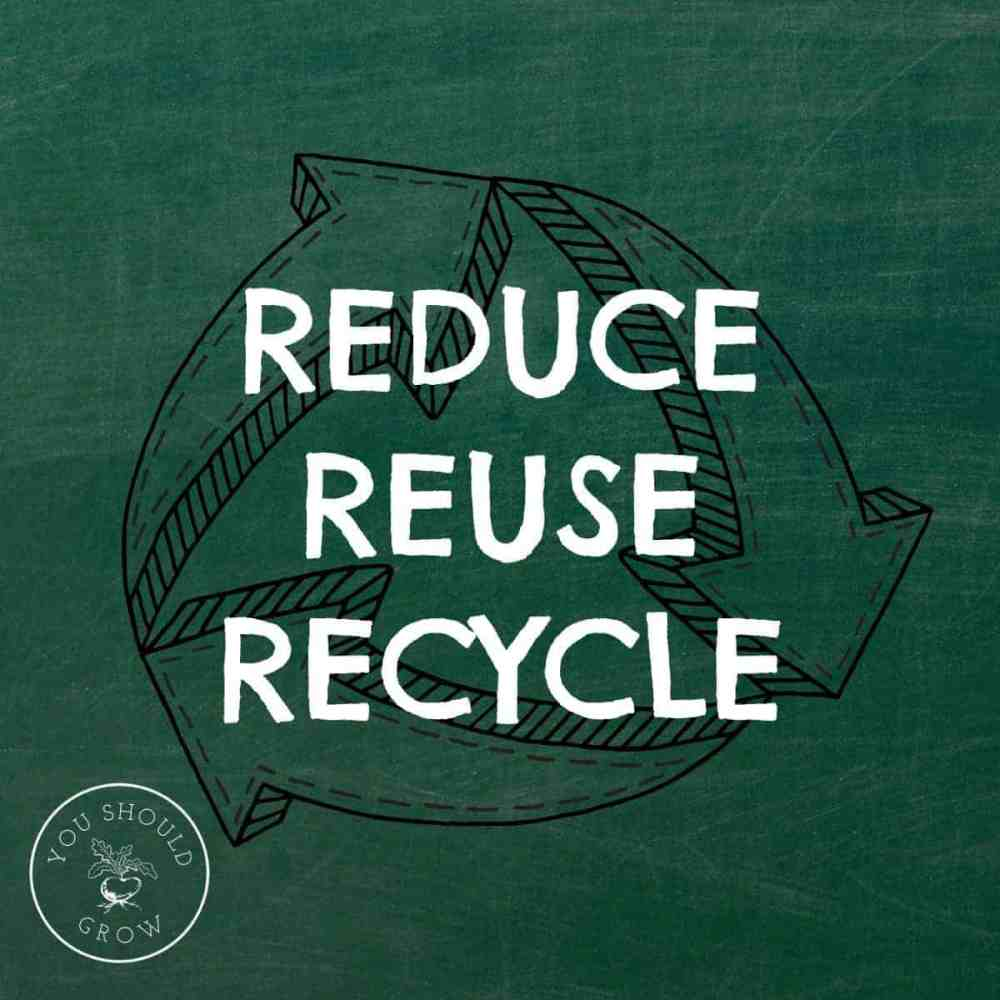 Reduce, Reuse, Recycle: Simple Changes That Make A Big Difference