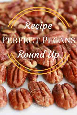 Try these fabulous recipes for 10 different ways to use pecans this fall. An absolutely delicious pecan recipes round up.