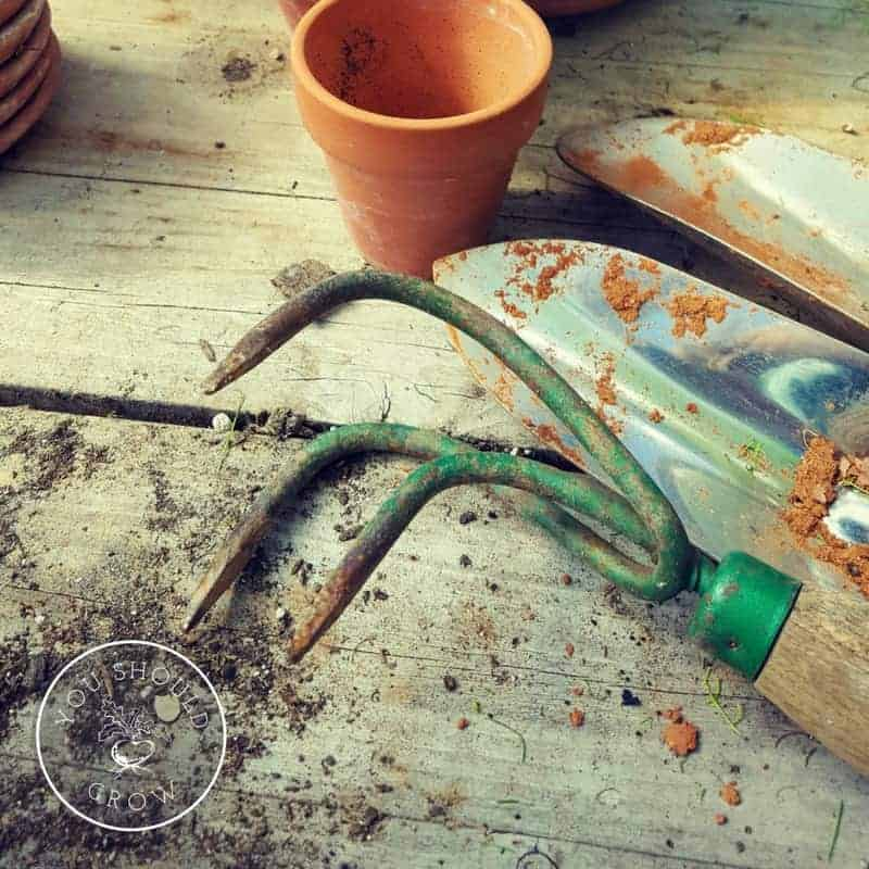 How To Choose Quality Garden Tools