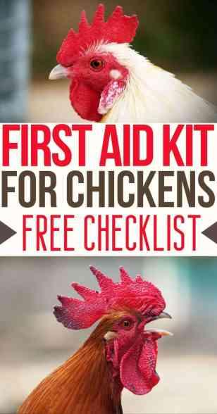chicken first aid pinterest pin