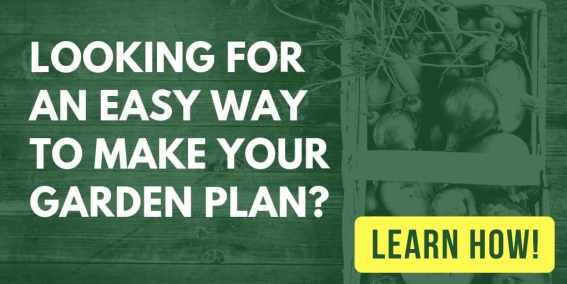 Text overlaying image of vegetables in basket: looking for an easy way to make your garden plan? Learn how!