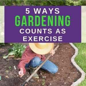 gardener kneeling in garden with rake: text overlay 5 ways gardening counts as exercise