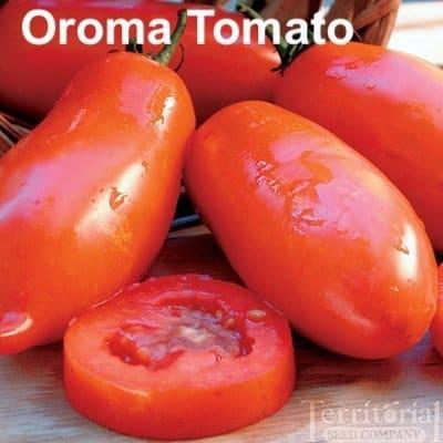 Oroma tomatoes