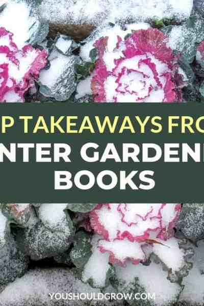 top takeaways from winter gardening books text on image of snow covered cabbage