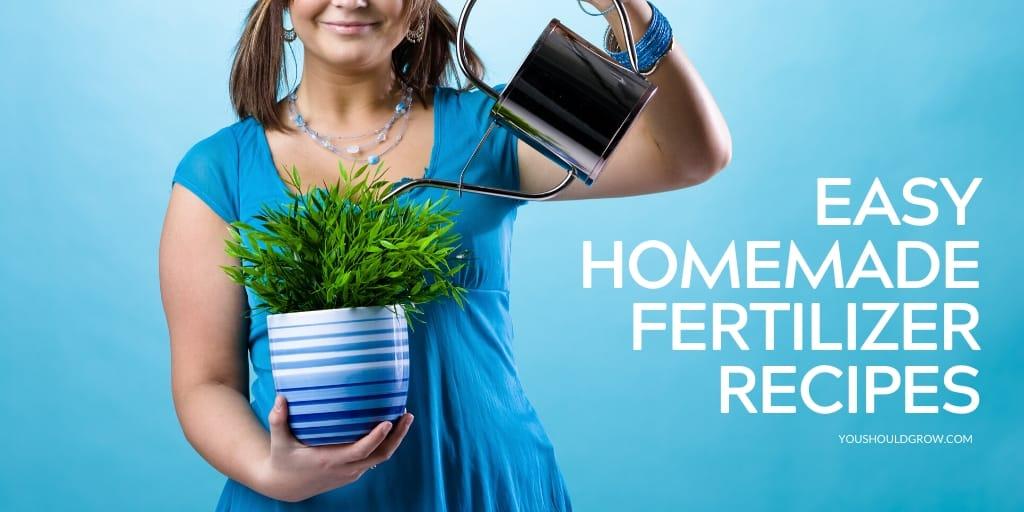 easy homemade fertilizer recipes text overlay image