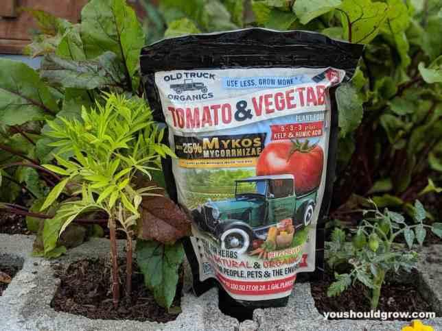 organic tomato fertilizer