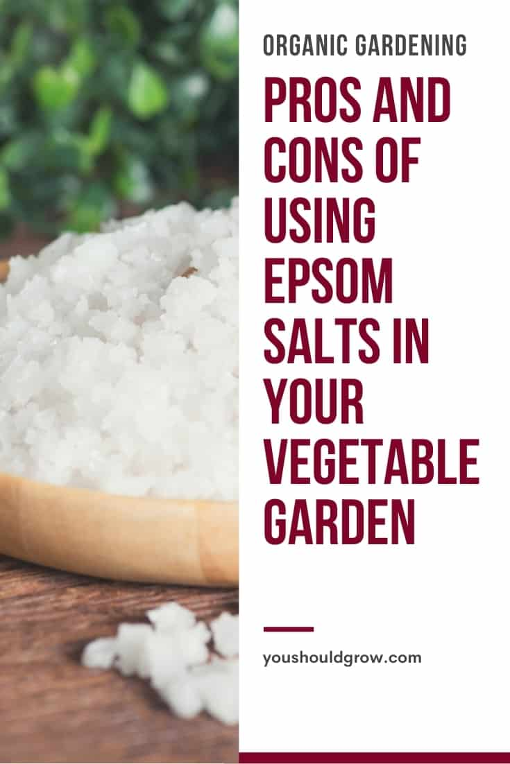 What is Epsom salt, and what are the uses of Epsom salt in the garden? Get the answers to your questions here.