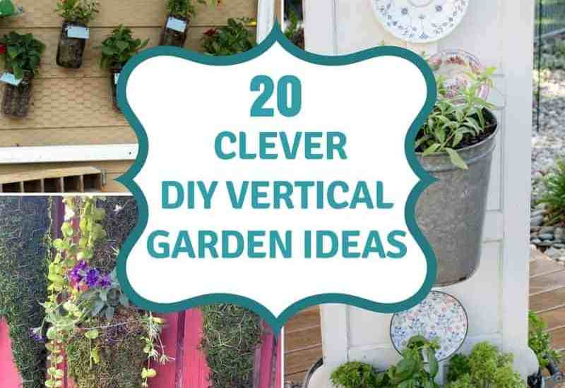20 clever diy vertical garden ideas text overlay collage of images