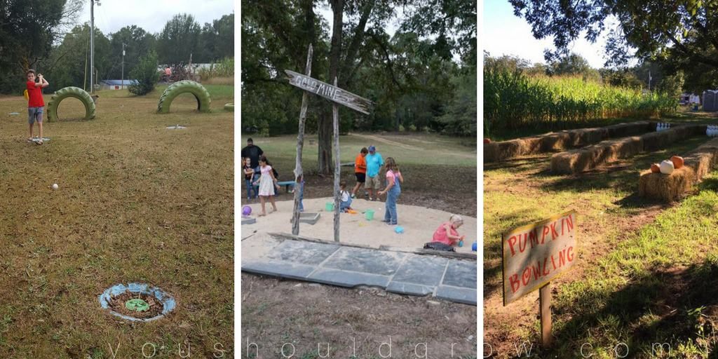 Five forks corn maze family fun