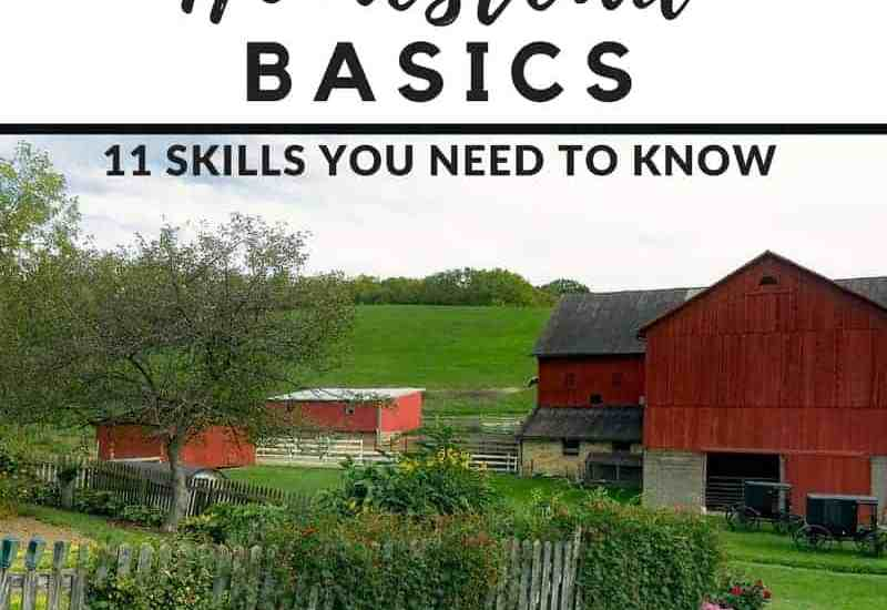 Thinking of homesteading? These are the basic homestead skills you need to know.