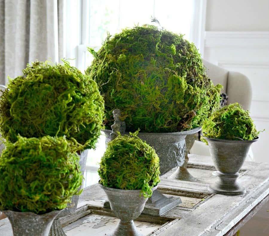 Moss decor ideas: using moss balls