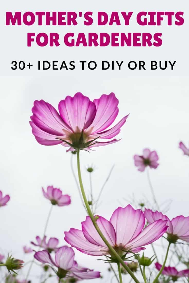 Gift ideas for gardening moms you should grow mothers day gifts for gardeners 30 ideas to diy or buy text overlaying image of workwithnaturefo