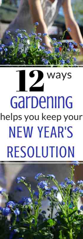 Gardening can help you keep you new year's resolution! It's true! Read the article to find out how gardening can help you be successful at making positive changes in your life.