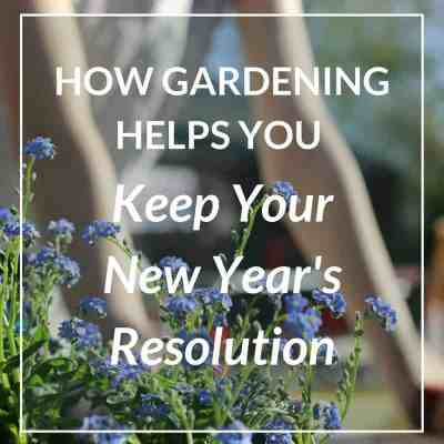 12 Ways Gardening Helps You Keep Your New Year's Resolution