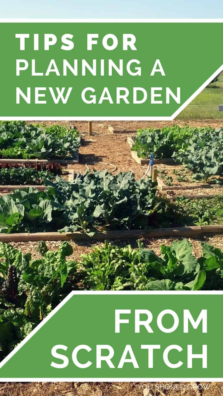 Backyard Vegetable Garden: Starting a vegetable garden is one of the most exciting things about spring! But it's not necessarily as simple buying some plants and sticking them in the ground. It helps to do some research and have a plan for what will really grow well for you. Gardening For Beginners | How To Grow | Homesteading