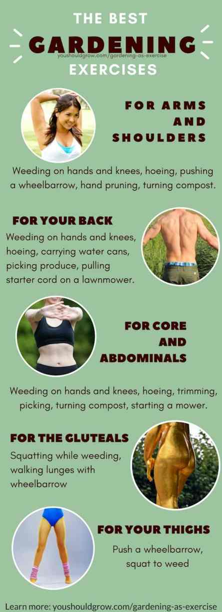 Getting exercise in the garden. The best gardening exercises for arm, back, core, thighs, butt