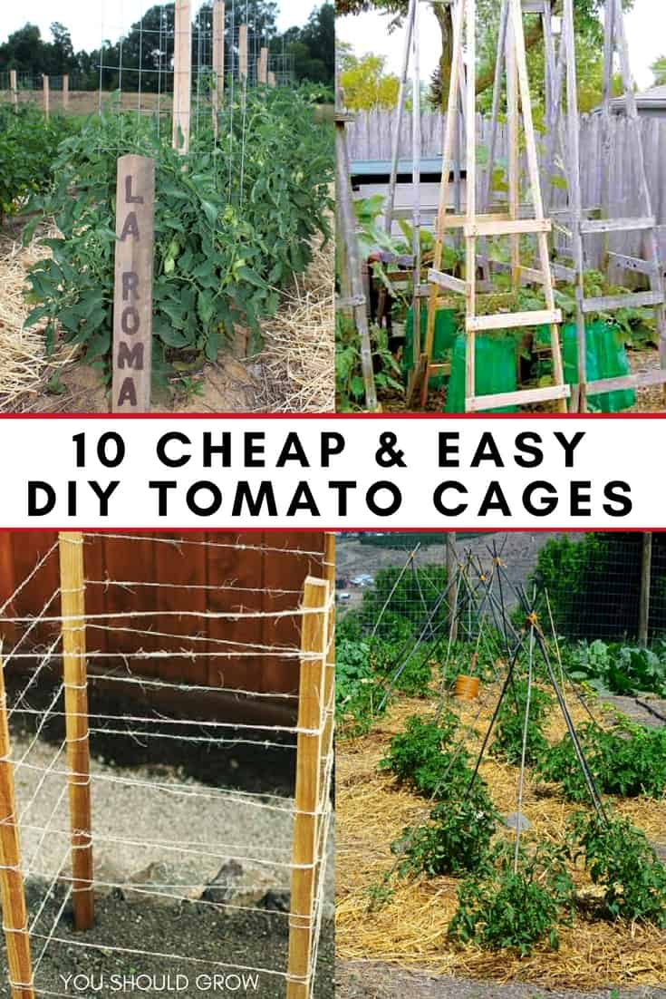 10 Cheap Amp Easy Tomato Cages To Diy This Weekend You Should Grow