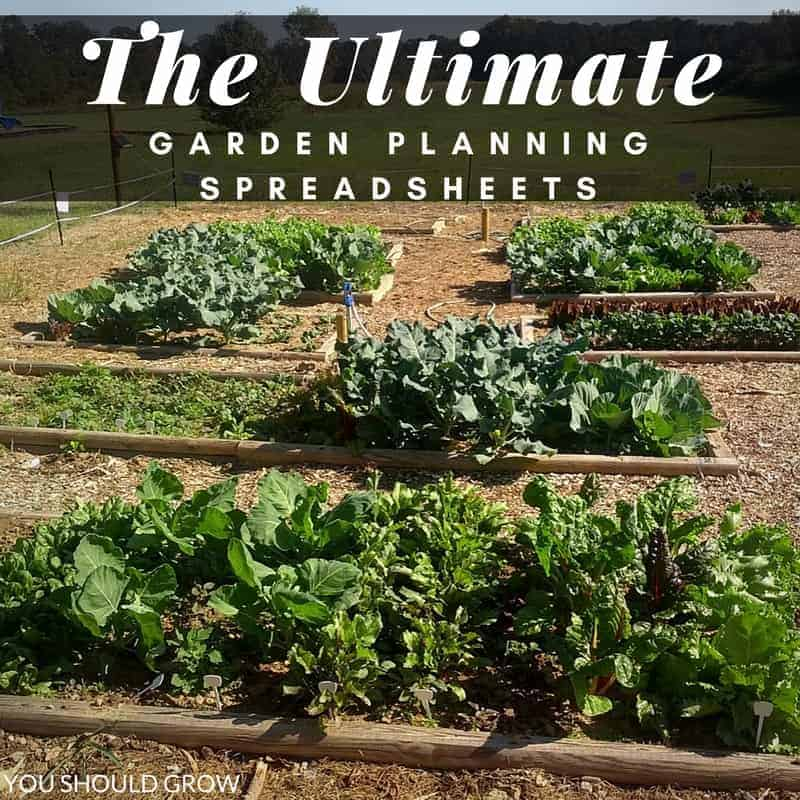 Try These Easy To Use Vegetable Garden Planning Spreadsheets | You