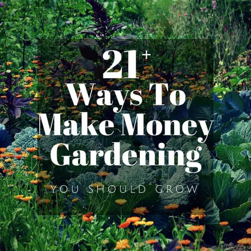Make Money Gardening 29 Ideas To Start Earning Now You